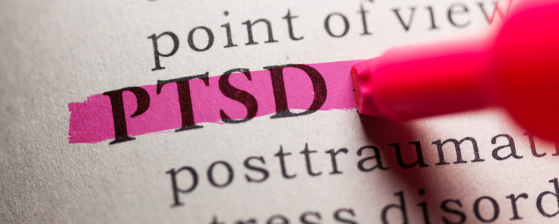 Fake Dictionary, definition of the word PTSD, PTSD highlighted on pink